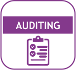 AUDITING ICON